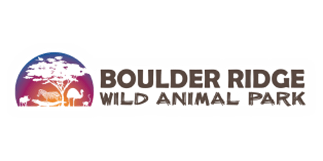 Touched by Adoption - Summer Celebration tickets