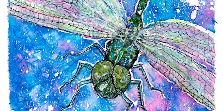 Project Dragonfly - a Spring Extravaganza! tickets