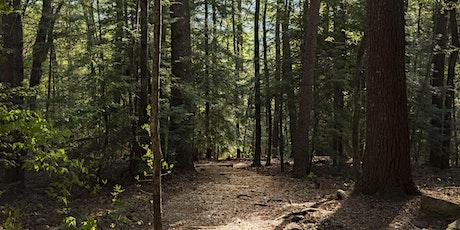 Plant Carnivores & Conservation in a Rare North Georgia Habitat tickets