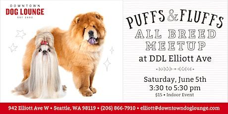 Puffs & Fluffs Dog Meetup at DDL Elliott - All Breeds tickets