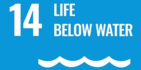 Life Below Water Storytelling w/ ArcGIS-EcoAmbassador Summer Program Launch tickets