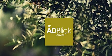 Hablemos de inversiones - ADBlick Olivos entradas