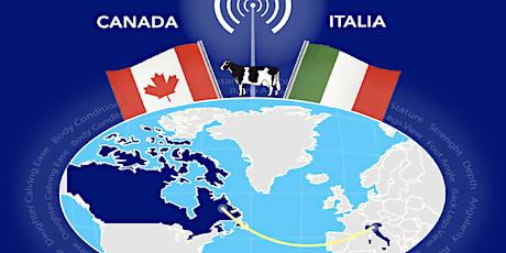 Webinar: Valutazione Morfologica Italia-Canada biglietti