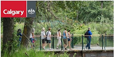Nature Wellness Workshop tickets