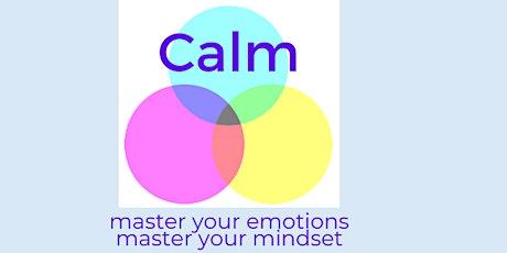Calm - 2 day workshop tickets
