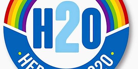 Hero's 20 Music Festival tickets