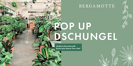 Bergamotte Pop Up Dschungel // Graz Tickets