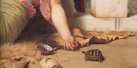 Tortoise Keeping in Europe -a Brief History  - Eleanor Chubb - Zoom Lecture tickets