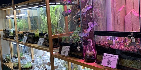Carnivorous Plant Weekend at the Texas Triffid Ranch tickets