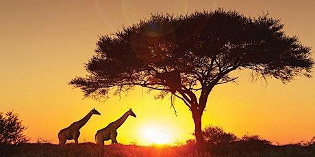 Africa Safari entradas