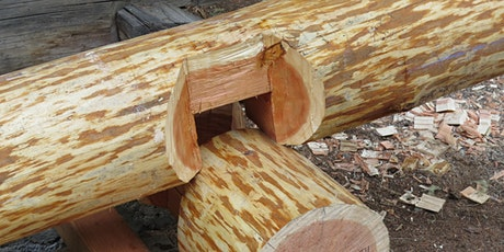 Building With Logs - Session 3 tickets
