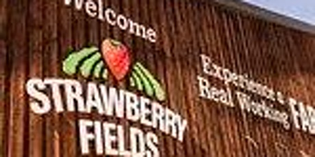 Pi Singles - Sunday Roast at Strawberry Fields tickets