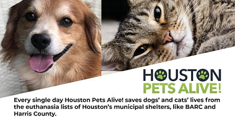 Houston Pets Alive Fundraising Mixer presented by BHHS Premier Properties tickets