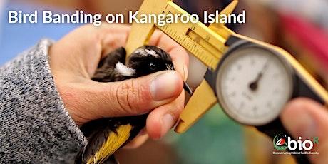 Bird Banding on Kangaroo Island tickets