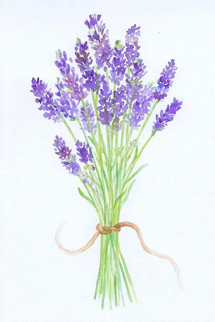 Lavender Bouquet Watercolor,  Art Class for Teens & Adults image