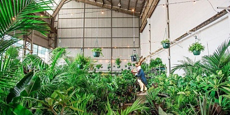 Melbourne - Huge Indoor Plant Warehouse Sale - Mad Hatter's Party tickets