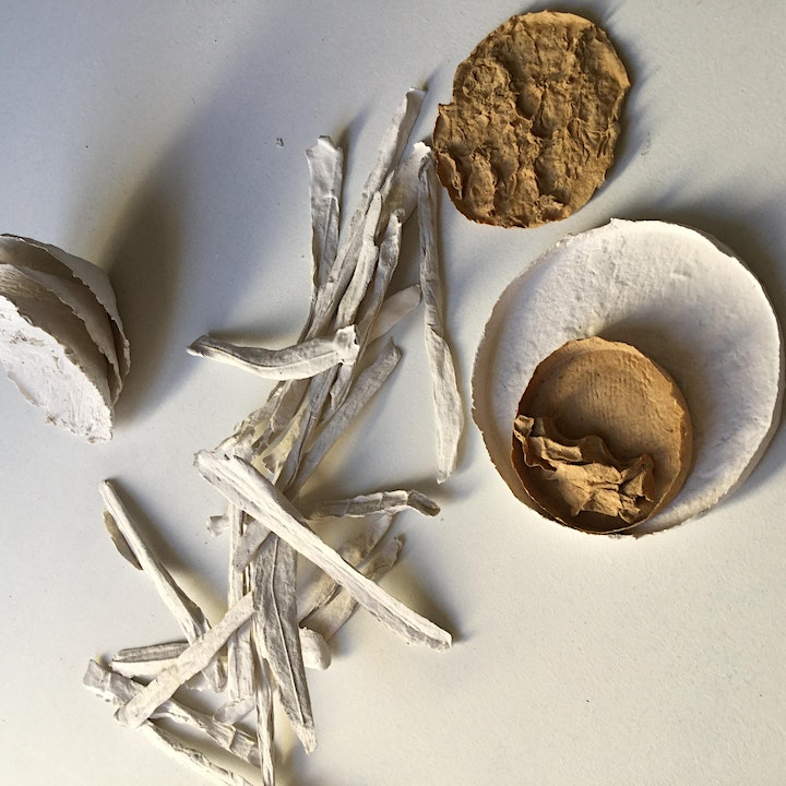 Earthed: Papermaking inspired by Place image