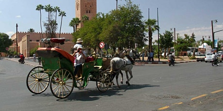 Virtual Live Marrakech Horse Carriage Ride with Walking Tour in Medina tickets