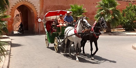 Virtual Live Marrakech Horse Carriage Tour and Majorelle Garden Excursions tickets