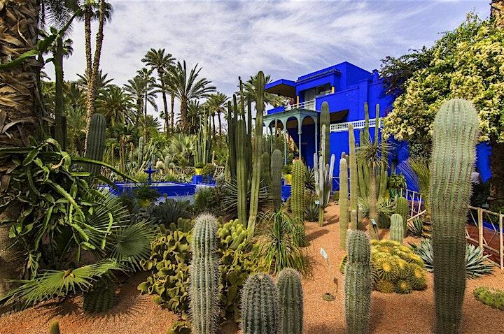 Virtual Live Marrakech Horse Carriage Tour and Majorelle Garden Excursions image