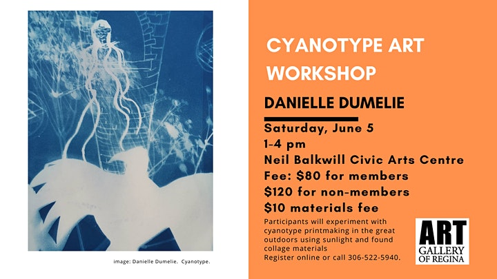 Cyanotypes with Danielle Dumelie image