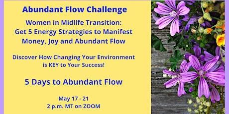 Abundant Flow Challenge tickets