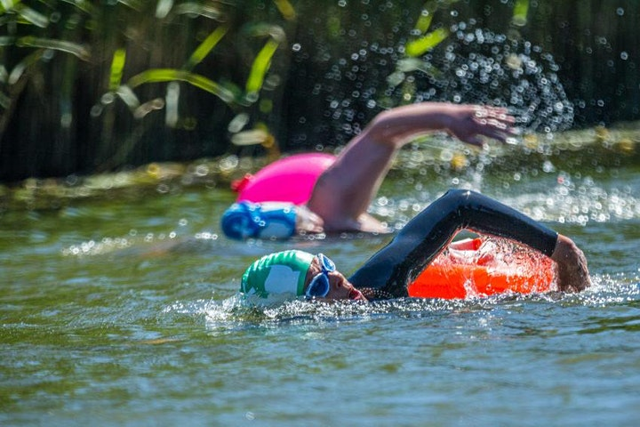 Intro to Wild Swimming image