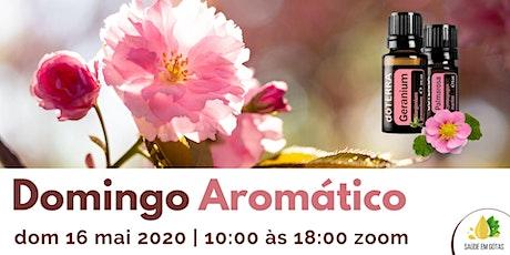 """""""Domingo Aromático - Todas as Aulas"""" entradas"""