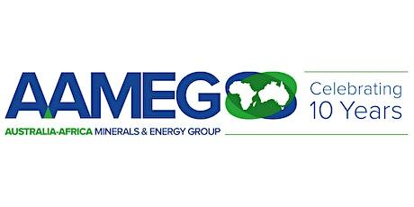Invitation: Celebrate 10 Years of AAMEG tickets
