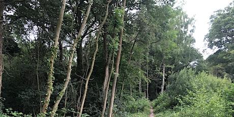 Wellbeing Walk at Horish Wood, Detling tickets
