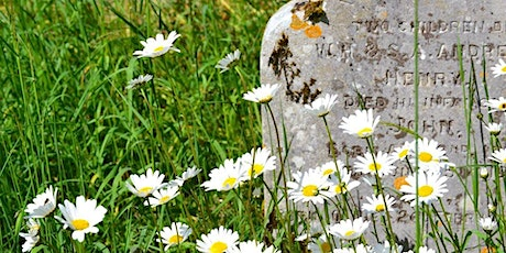 Identify & Record Wildflowers and Plants - Ulverston tickets