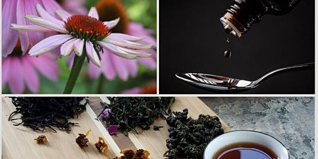 Healing with Herbs Walk & Talk tickets