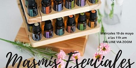 Introducción  Aceites Esenciales, recuerda el poder de plantas medicinales entradas