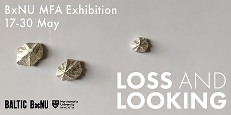Loss and Looking - BALTIC 39 Project Space Free Admission tickets