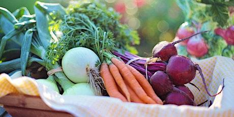 Container Edibles: Grow a Cool Season Salad biglietti
