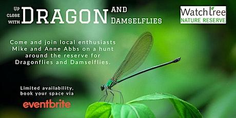 Dragon and Damselflies Up Close tickets