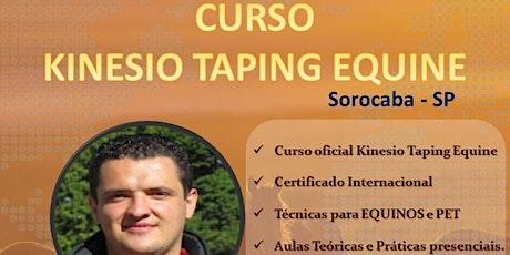 CURSO KINESIO TAPING EQUINE - KTE 1-2 ingressos