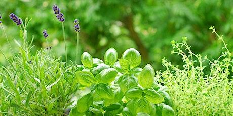 BYOB Kitchen Herb Garden Workshop tickets