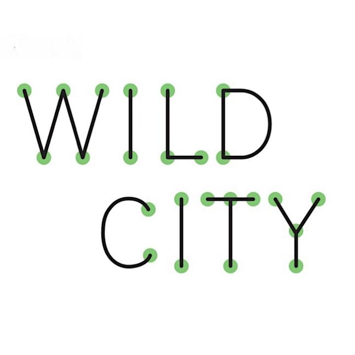 WILD CITY – Stewarding image