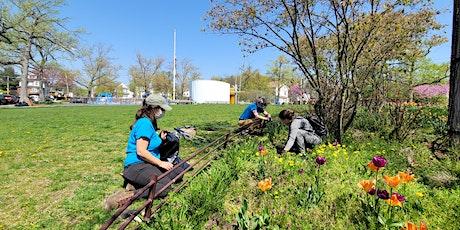 Volunteer Landscaping at Freshkills Schmul Park tickets