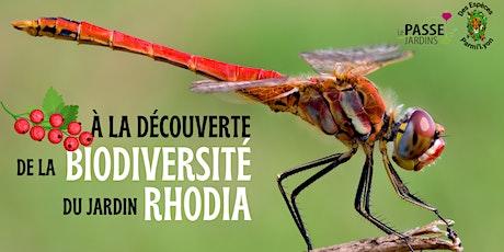 A la découverte de la faune et de la flore du jardin Rhodia billets