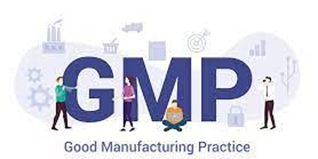 Fundamentals of Good Manufacturing Practices (GMP): Developing a Compliance entradas