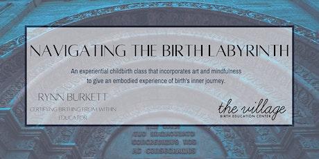 Navigating the Birth Labyrinth tickets