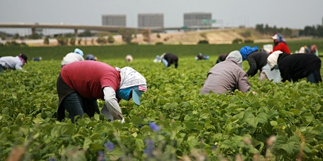 Webinar on Migrant and Mobile Workers' Access to Healthcare tickets