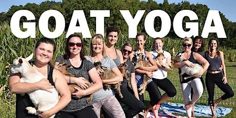 Goat Yoga Saturday May 15th 10 am tickets