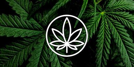 Reprise du Webinaire : Consommation de cannabis et anxiété billets