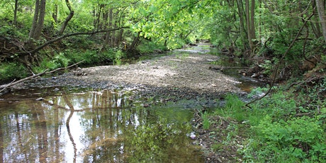 Bald Hill Branch Stream Restoration - Virtual Public Meeting tickets