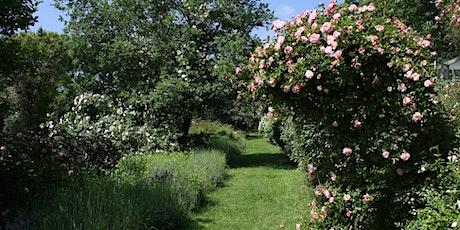 Navetta Giardino di Rose del Podere Le Vigne - Diverdeinverde, 22 maggio biglietti