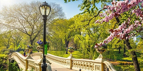 Central Park Social Walk tickets