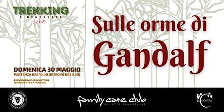 SULLE ORME DI GANDALF biglietti